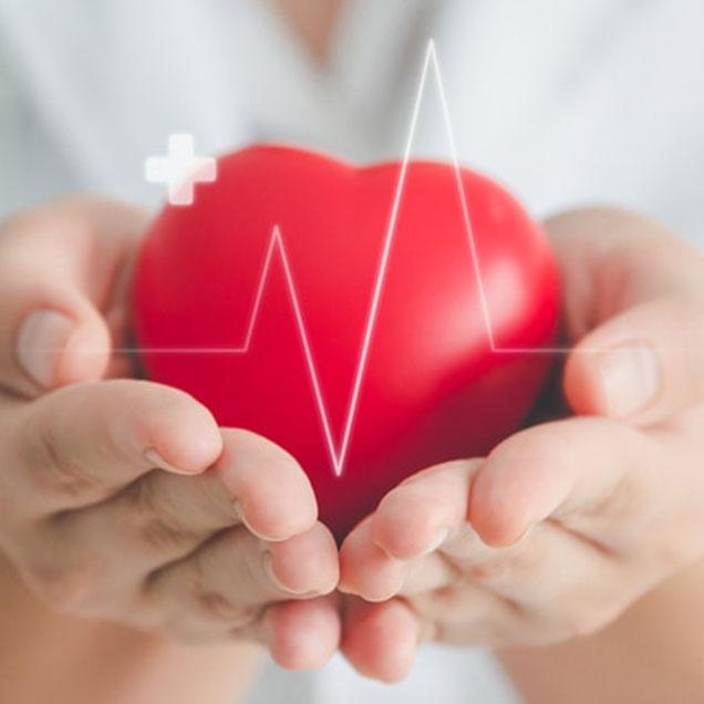 EKG Screenings